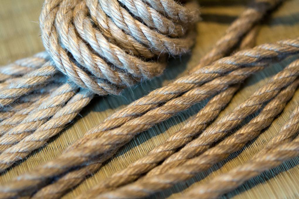 Nawajiri - das laufende Ende des Seils.